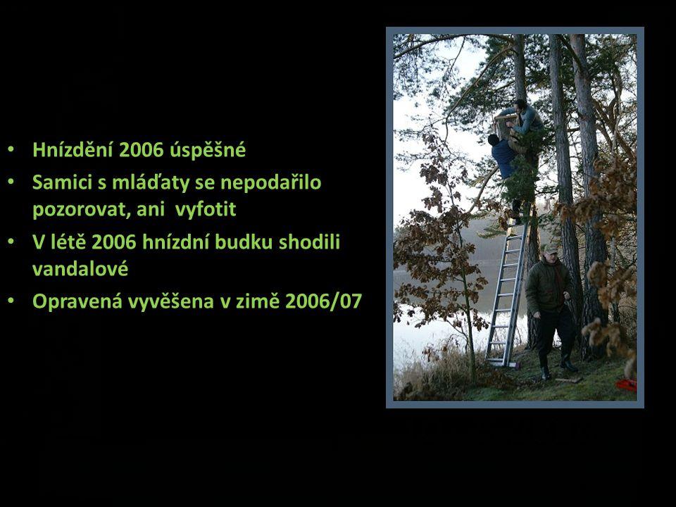 Hnízdění 2006 úspěšné Samici s mláďaty se nepodařilo pozorovat, ani vyfotit V létě 2006 hnízdní budku shodili vandalové Opravená vyvěšena v zimě 2006/