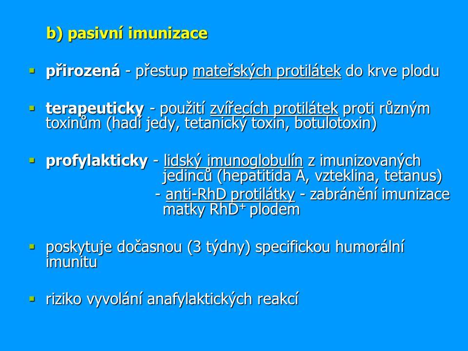 b) pasivní imunizace b) pasivní imunizace  přirozená - přestup mateřských protilátek do krve plodu  terapeuticky - použití zvířecích protilátek prot
