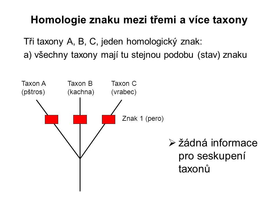 Homologie znaku mezi třemi a více taxony Tři taxony A, B, C, jeden homologický znak: a) všechny taxony mají tu stejnou podobu (stav) znaku Taxon A (pš