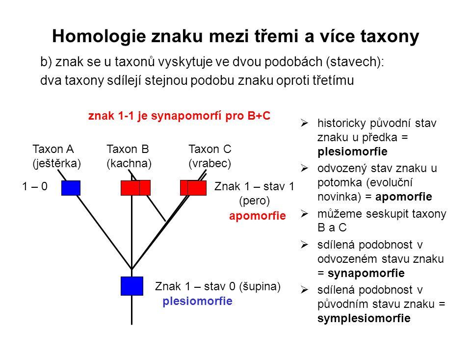 b) znak se u taxonů vyskytuje ve dvou podobách (stavech): dva taxony sdílejí stejnou podobu znaku oproti třetímu Znak 1 – stav 0 (šupina) Znak 1 – sta