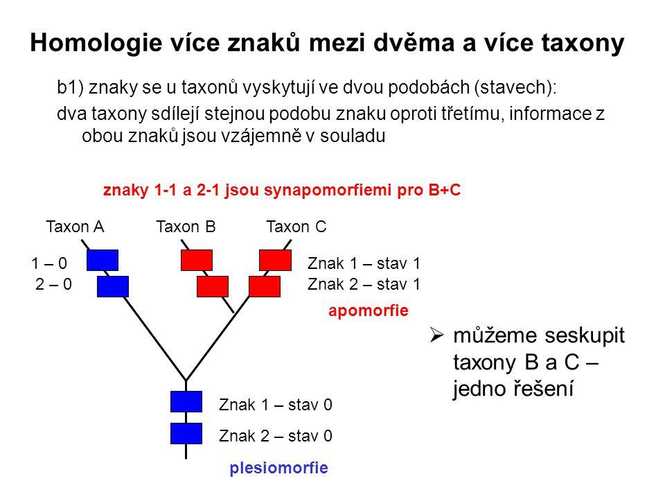 b1) znaky se u taxonů vyskytují ve dvou podobách (stavech): dva taxony sdílejí stejnou podobu znaku oproti třetímu, informace z obou znaků jsou vzájem