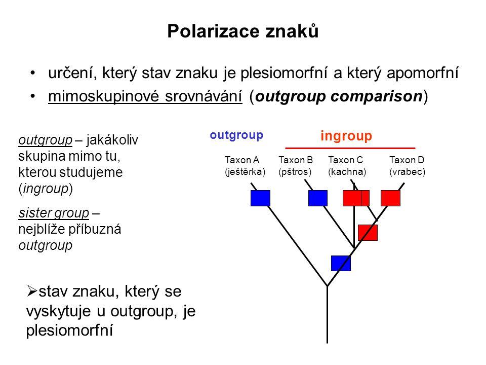 Polarizace znaků určení, který stav znaku je plesiomorfní a který apomorfní mimoskupinové srovnávání (outgroup comparison) outgroup – jakákoliv skupin