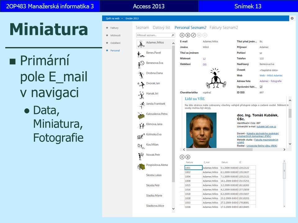 Miniatura Primární pole E_mail v navigaci Data, Miniatura, Fotografie Access 2013Snímek 132OP483 Manažerská informatika 3