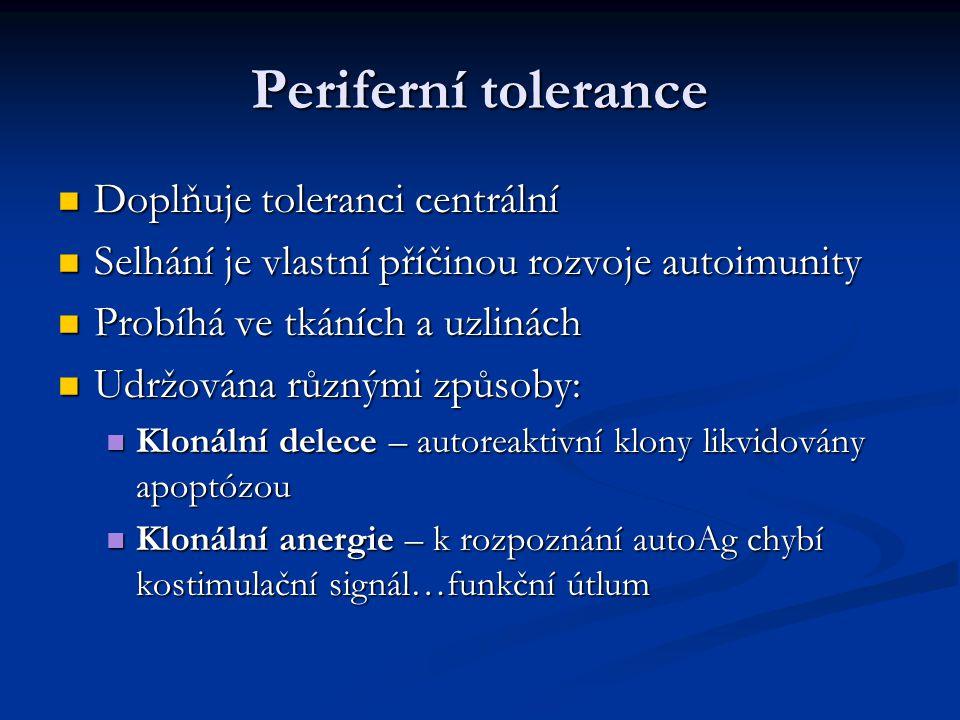 Periferní tolerance Doplňuje toleranci centrální Doplňuje toleranci centrální Selhání je vlastní příčinou rozvoje autoimunity Selhání je vlastní příčinou rozvoje autoimunity Probíhá ve tkáních a uzlinách Probíhá ve tkáních a uzlinách Udržována různými způsoby: Udržována různými způsoby: Klonální delece – autoreaktivní klony likvidovány apoptózou Klonální delece – autoreaktivní klony likvidovány apoptózou Klonální anergie – k rozpoznání autoAg chybí kostimulační signál…funkční útlum Klonální anergie – k rozpoznání autoAg chybí kostimulační signál…funkční útlum