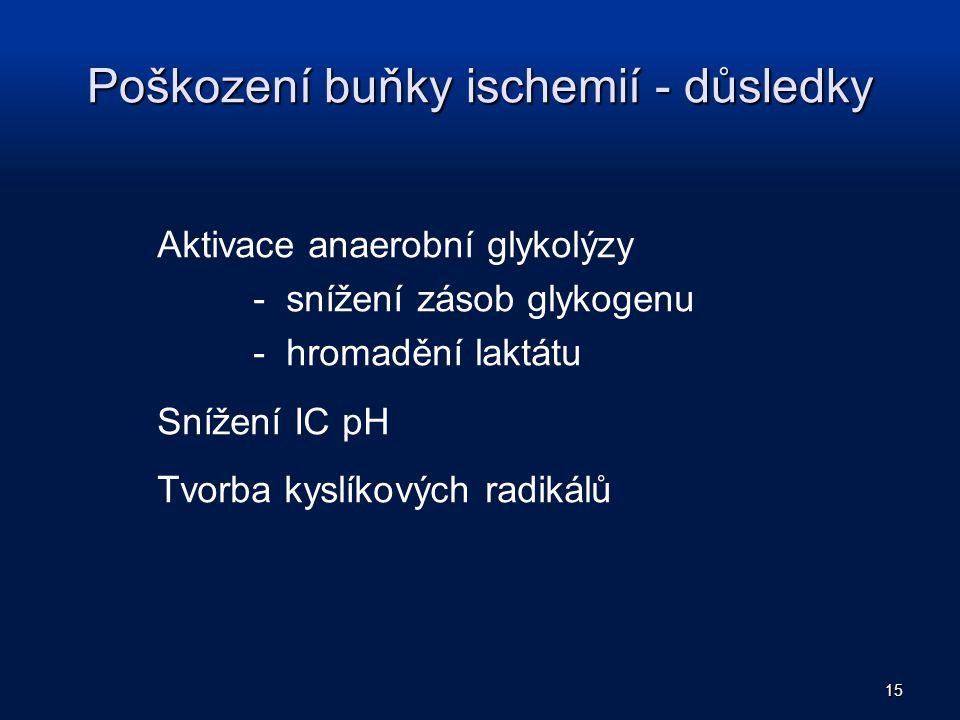 Poškození buňky ischemií - důsledky Aktivace anaerobní glykolýzy - snížení zásob glykogenu - hromadění laktátu Snížení IC pH Tvorba kyslíkových radiká