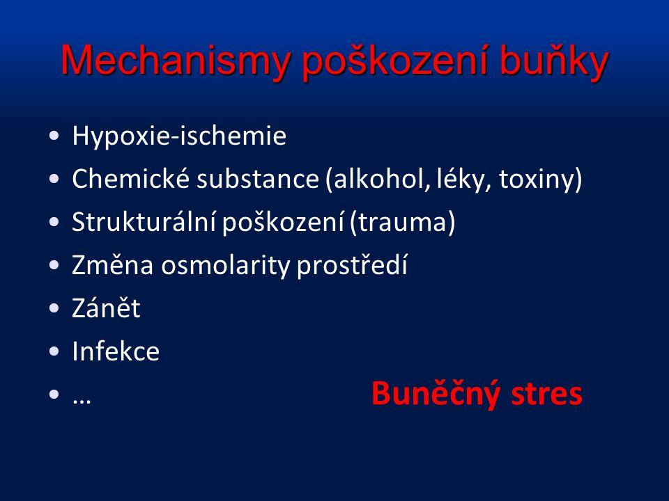 Mechanismy poškození buňky Hypoxie-ischemie Chemické substance (alkohol, léky, toxiny) Strukturální poškození (trauma) Změna osmolarity prostředí Záně