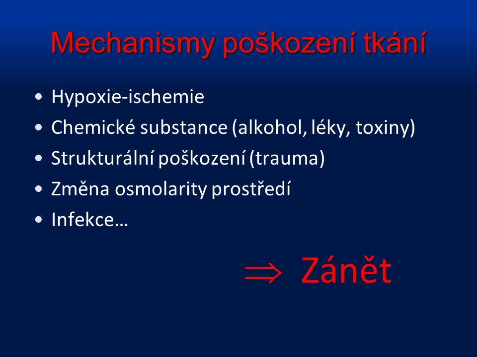 Mechanismy poškození tkání Hypoxie-ischemie Chemické substance (alkohol, léky, toxiny) Strukturální poškození (trauma) Změna osmolarity prostředí Infe