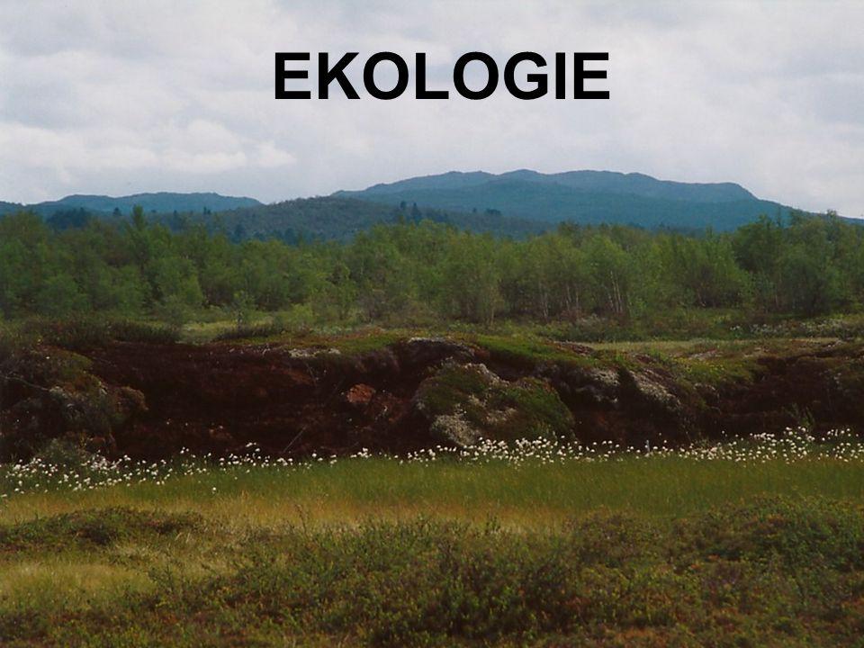 Definice:  Věda, která studuje vztahy organismů k okolnímu prostředí a vzájemné vztahy mezi organismy, se nazývá ekologie.