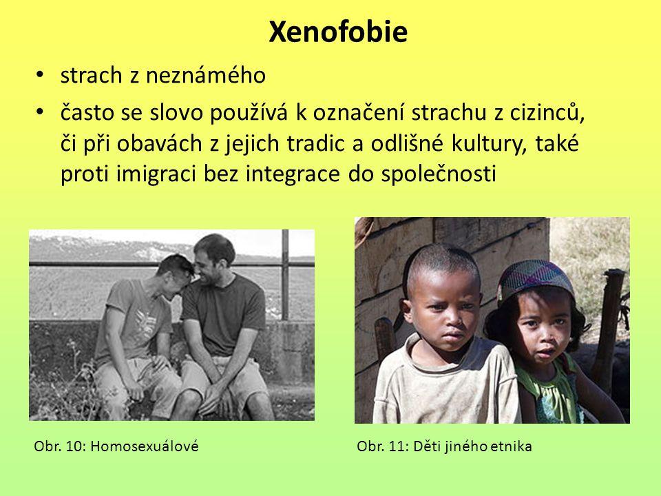 Xenofobie strach z neznámého často se slovo používá k označení strachu z cizinců, či při obavách z jejich tradic a odlišné kultury, také proti imigrac