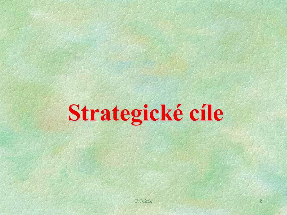 F.Ježek8 Strategické cíle