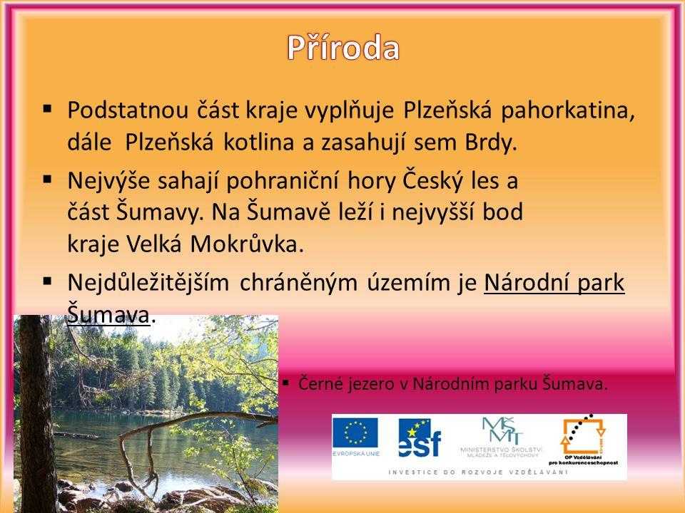  Podstatnou část kraje vyplňuje Plzeňská pahorkatina, dále Plzeňská kotlina a zasahují sem Brdy.