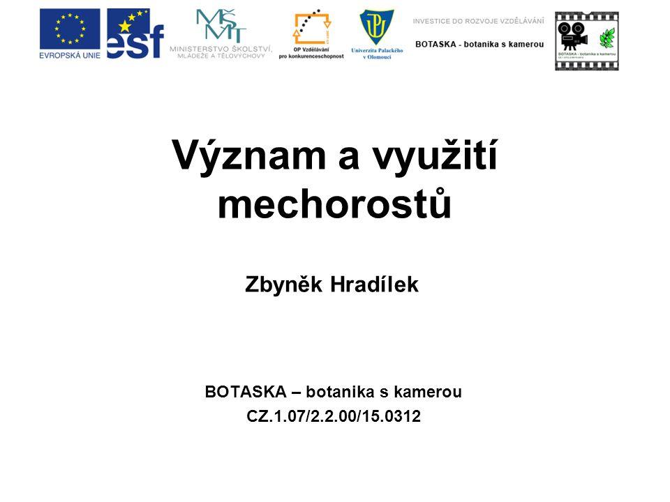 Význam a využití mechorostů BOTASKA – botanika s kamerou CZ.1.07/2.2.00/15.0312 Zbyněk Hradílek