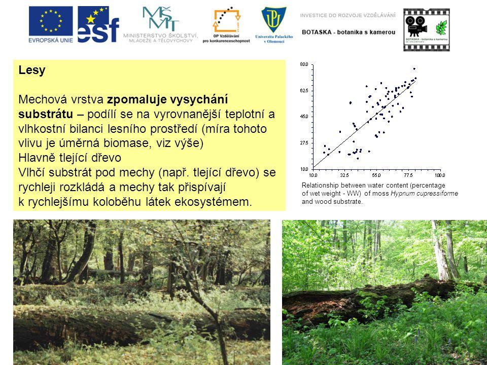 Lesy Mechová vrstva zpomaluje vysychání substrátu – podílí se na vyrovnanější teplotní a vlhkostní bilanci lesního prostředí (míra tohoto vlivu je úměrná biomase, viz výše) Hlavně tlející dřevo Vlhčí substrát pod mechy (např.