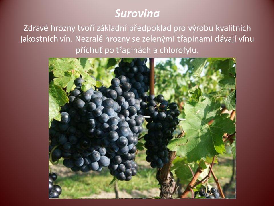 Surovina Zdravé hrozny tvoří základní předpoklad pro výrobu kvalitních jakostních vín. Nezralé hrozny se zelenými třapinami dávají vínu příchuť po třa