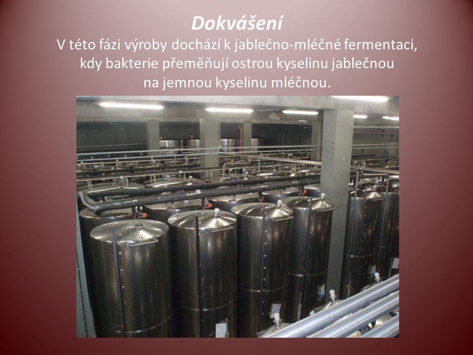Dokvášení V této fázi výroby dochází k jablečno-mléčné fermentaci, kdy bakterie přeměňují ostrou kyselinu jablečnou na jemnou kyselinu mléčnou.