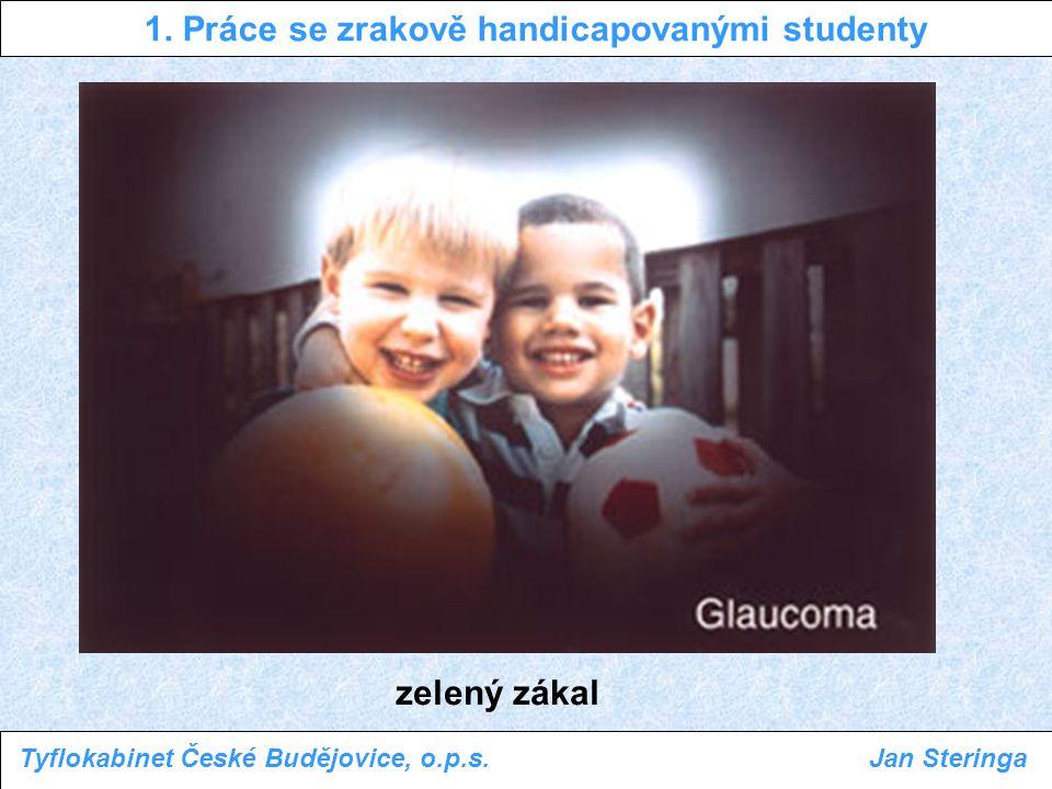 1. Práce se zrakově handicapovanými studenty Tyflokabinet České Budějovice, o.p.s.Jan Steringa zelený zákal