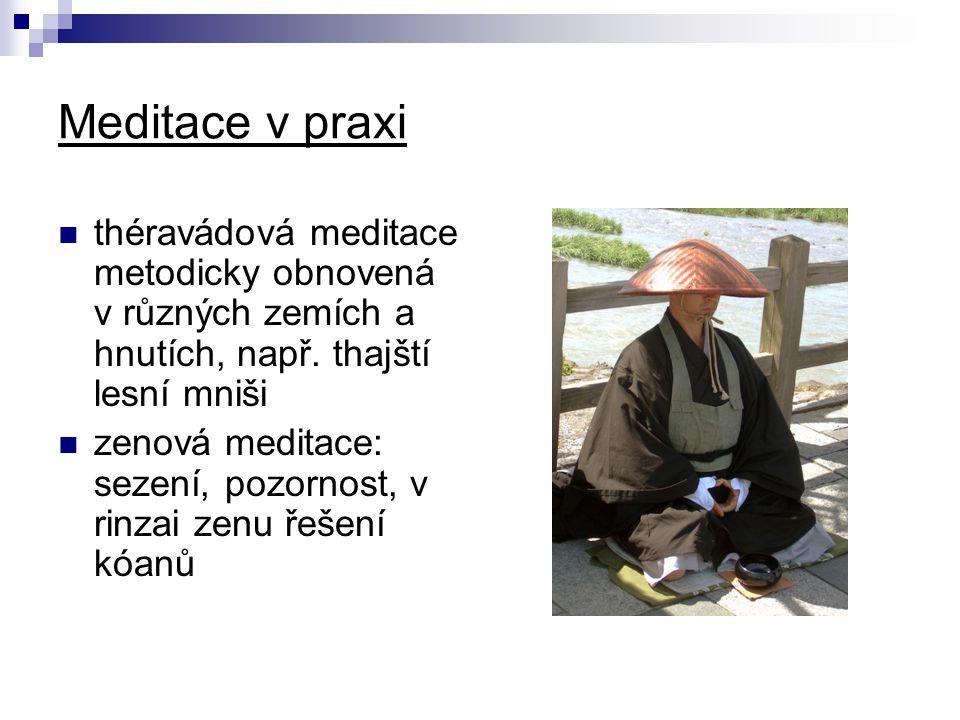 Meditace v praxi théravádová meditace metodicky obnovená v různých zemích a hnutích, např. thajští lesní mniši zenová meditace: sezení, pozornost, v r