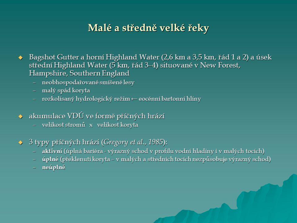 Malé a středně velké řeky  Bagshot Gutter a horní Highland Water (2,6 km a 3,5 km, řád 1 a 2) a úsek střední Highland Water (5 km, řád 3–4) situované v New Forest, Hampshire, Southern England –neobhospodařované smíšené lesy –malý spád koryta –rozkolísaný hydrologický režim ← eocénní bartonní hlíny  akumulace VDÚ ve formě příčných hrází –velikost stromů x velikost koryta  3 typy příčných hrází ( Gregory et al., 1985 ): – aktivní (úplná bariéra - výrazný schod v profilu vodní hladiny i v malých tocích) – úplné (překlenutí koryta – v malých a středních tocích nezpůsobuje výrazný schod) – neúplné