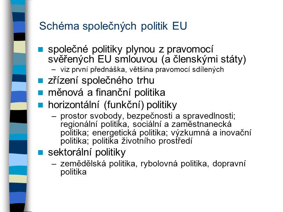 Schéma společných politik EU společné politiky plynou z pravomocí svěřených EU smlouvou (a členskými státy) –viz první přednáška, většina pravomocí sdílených zřízení společného trhu měnová a finanční politika horizontální (funkční) politiky –prostor svobody, bezpečnosti a spravedlnosti; regionální politika, sociální a zaměstnanecká politika; energetická politika; výzkumná a inovační politika; politika životního prostředí sektorální politiky –zemědělská politika, rybolovná politika, dopravní politika