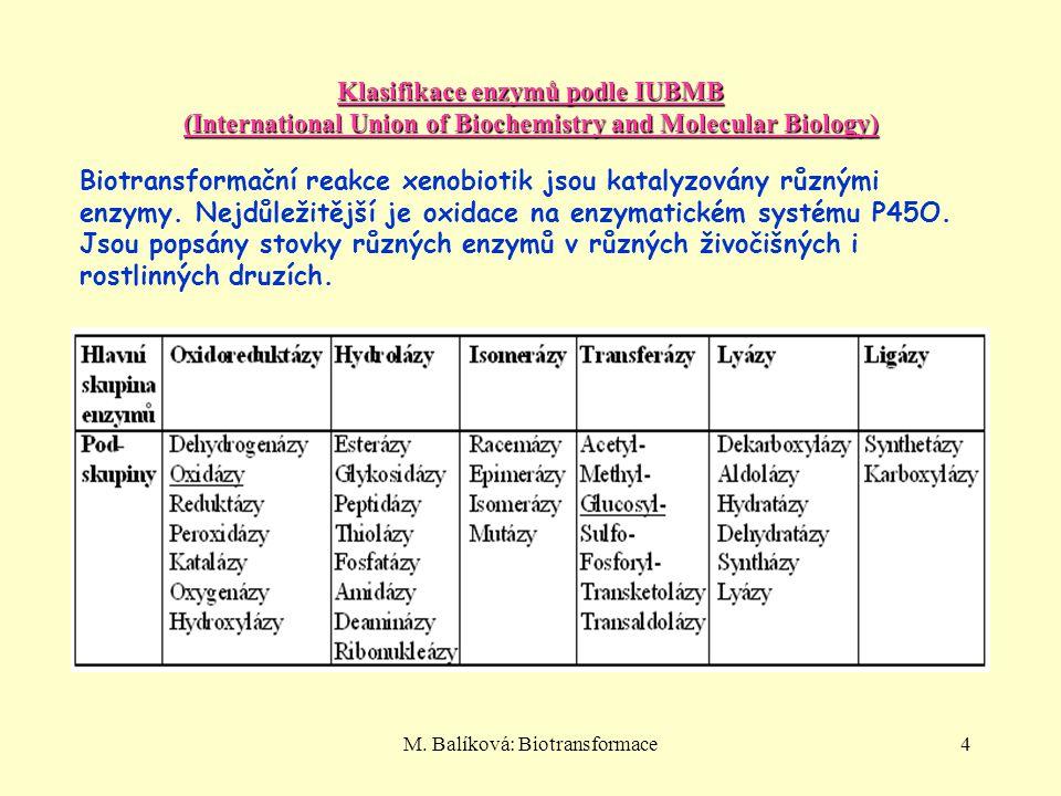 M. Balíková: Biotransformace4 Klasifikace enzymů podle IUBMB (International Union of Biochemistry and Molecular Biology) Biotransformační reakce xenob