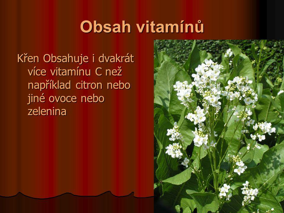 Obsah vitamínů Křen Obsahuje i dvakrát více vitamínu C než například citron nebo jiné ovoce nebo zelenina