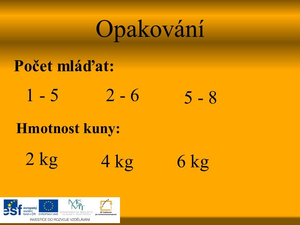 Opakování Počet mláďat: Hmotnost kuny: 2 - 61 - 5 5 - 8 4 kg 2 kg 6 kg