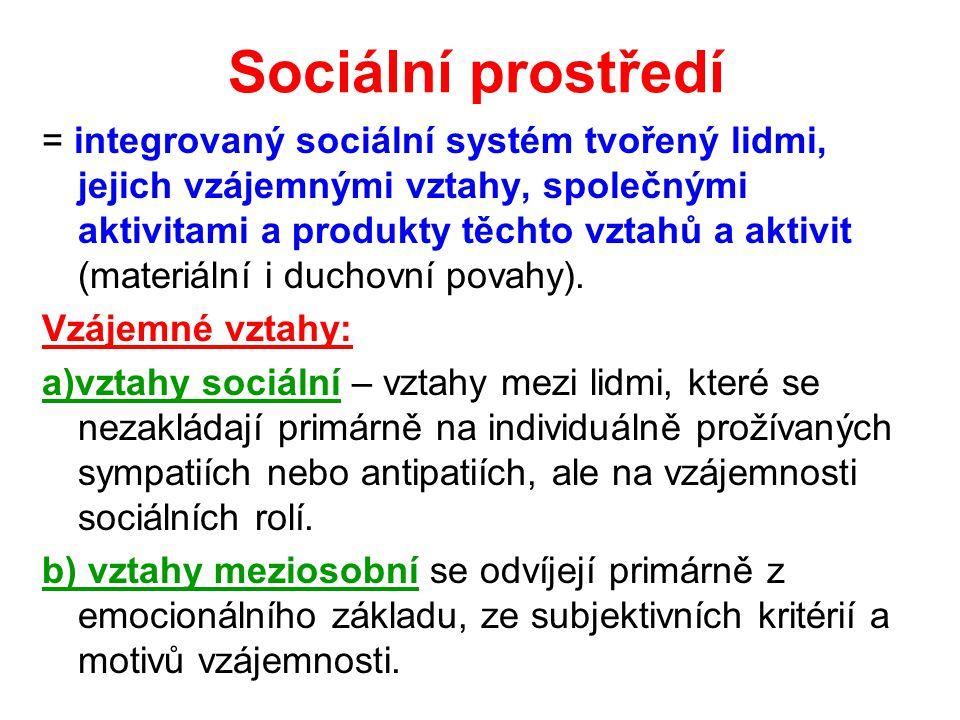 Sociální prostředí = integrovaný sociální systém tvořený lidmi, jejich vzájemnými vztahy, společnými aktivitami a produkty těchto vztahů a aktivit (materiální i duchovní povahy).
