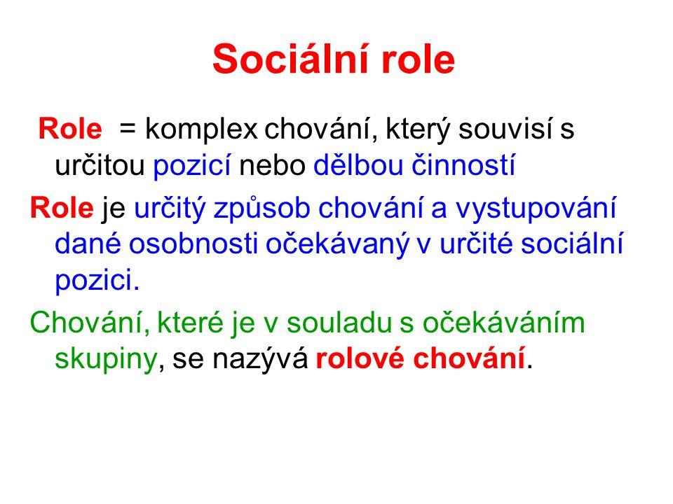 Sociální role Role = komplex chování, který souvisí s určitou pozicí nebo dělbou činností Role je určitý způsob chování a vystupování dané osobnosti očekávaný v určité sociální pozici.