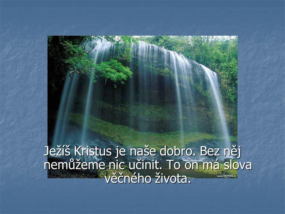Ježíš Kristus je naše dobro. Bez něj nemůžeme nic učinit. To on má slova věčného života.