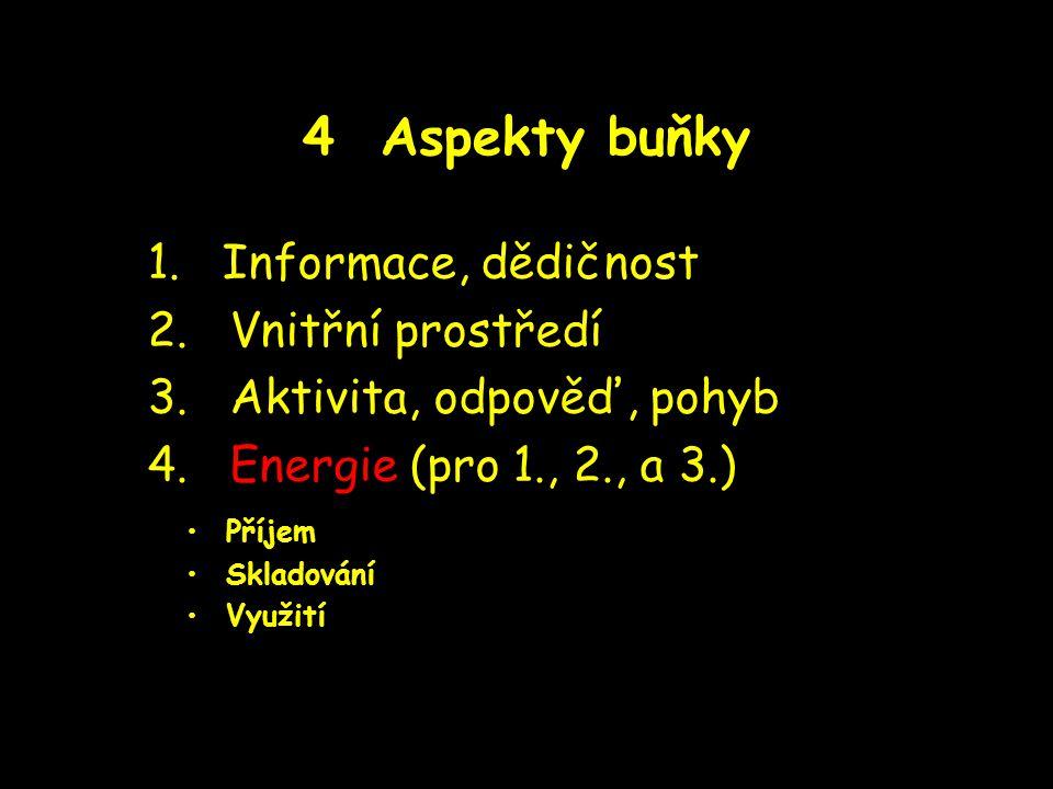 4 Aspekty buňky 1. Informace, dědičnost 2. Vnitřní prostředí 3. Aktivita, odpověď, pohyb 4. Energie (pro 1., 2., a 3.) Příjem Skladování Využití
