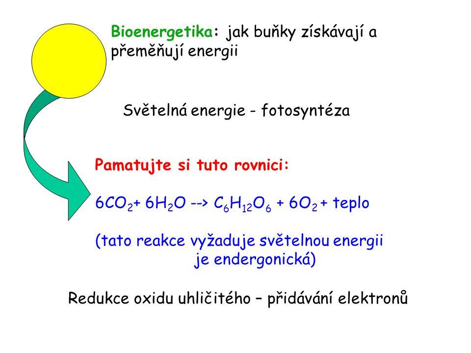 Pamatujte si tuto rovnici: 6CO 2 + 6H 2 O --> C 6 H 1 2 O 6 + 6O 2 + teplo (tato reakce vyžaduje světelnou energii je endergonická) Redukce oxidu uhli