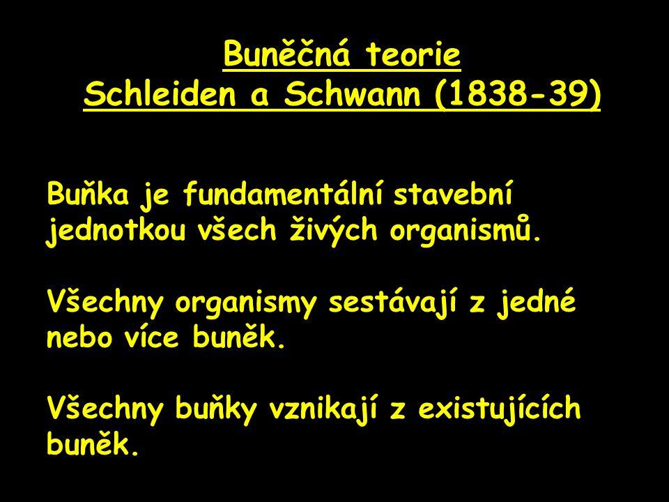 Buněčná teorie Schleiden a Schwann (1838-39) Buňka je fundamentální stavební jednotkou všech živých organismů. Všechny organismy sestávají z jedné neb