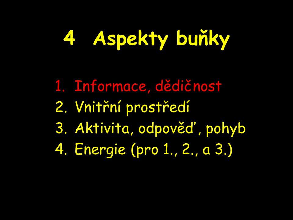 4 Aspekty buňky 1.Informace, dědičnost 2.Vnitřní prostředí 3.Aktivita, odpověď, pohyb 4.Energie (pro 1., 2., a 3.)