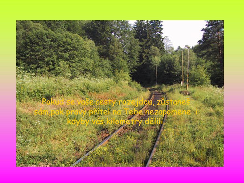 Pokud se vaše cesty rozejdou, zůstaneš sám,pak pravý přítel na Tebe nezapomene i kdyby vás kilometry dělili.
