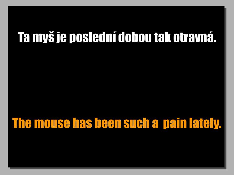 Ta myš je poslední dobou tak otravná. The mouse has been such a pain lately.