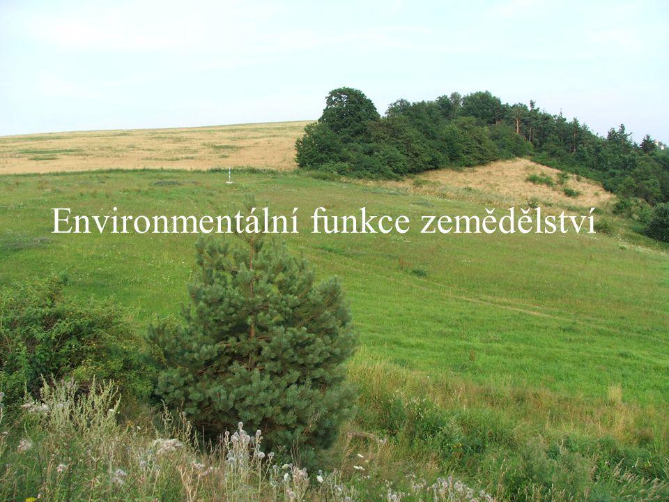 Tvorba travnatých pásů na svažitých půdách Rozdělení svahu na kratší úseky účinně brzdí odtok vody Zachycení většího množství vody na pozemku Zpomalení odnosu ornice Vytvoření prostředí příznivého pro rostliny a živočichy Zpestření krajiny, zvýšení její mnohotvárnosti a estetické hodnoty Platby- 9 440 Kč / ha