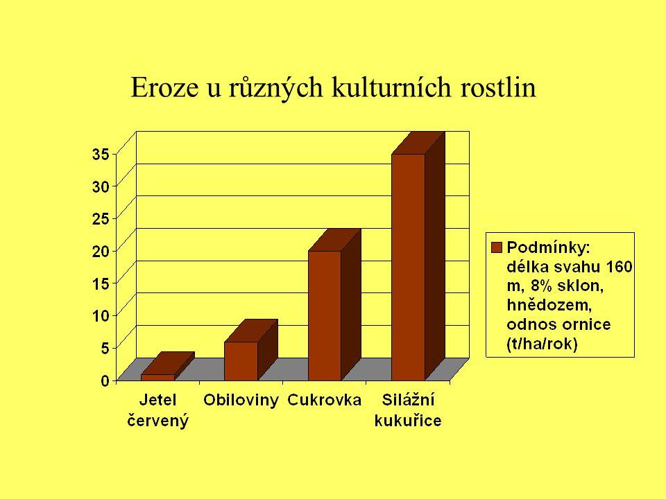 Eroze u různých kulturních rostlin