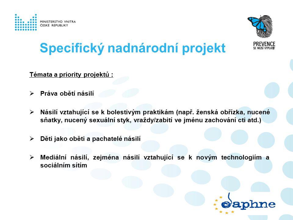Specifický nadnárodní projekt Témata a priority projektů :  Práva obětí násilí  Násilí vztahující se k bolestivým praktikám (např.