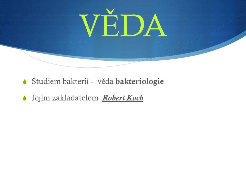 V Ě DA  Studiem bakterií - v ě da bakteriologie  Jejím zakladatelem Robert Koch