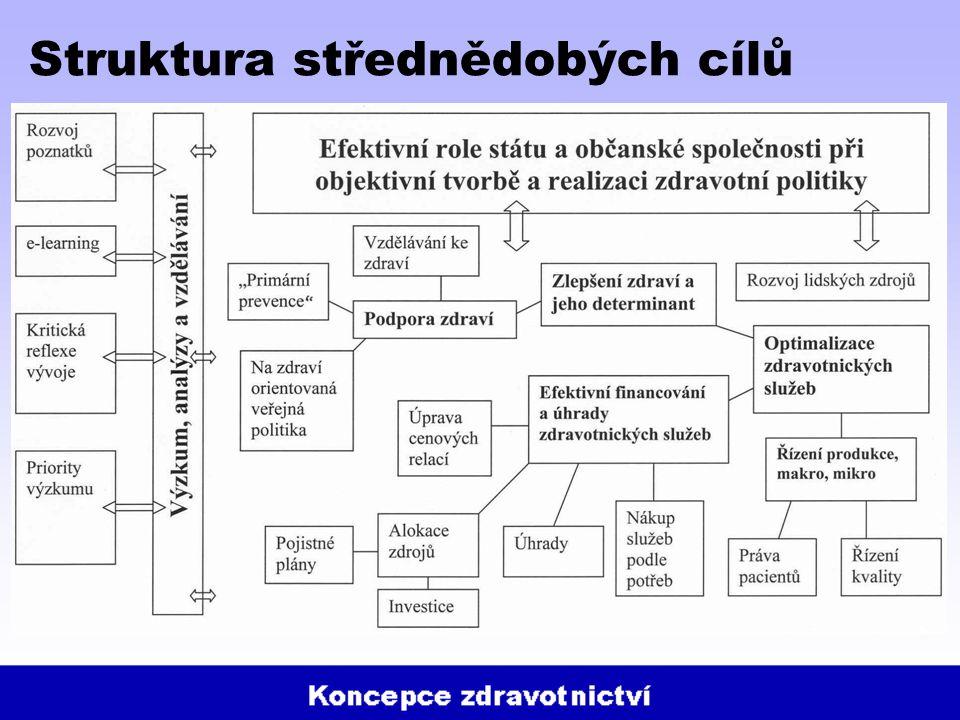 Struktura střednědobých cílů