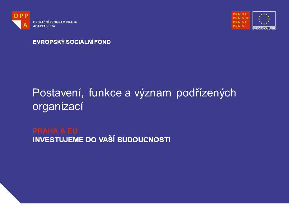 Postavení, funkce a význam podřízených organizací EVROPSKÝ SOCIÁLNÍ FOND PRAHA & EU INVESTUJEME DO VAŠÍ BUDOUCNOSTI