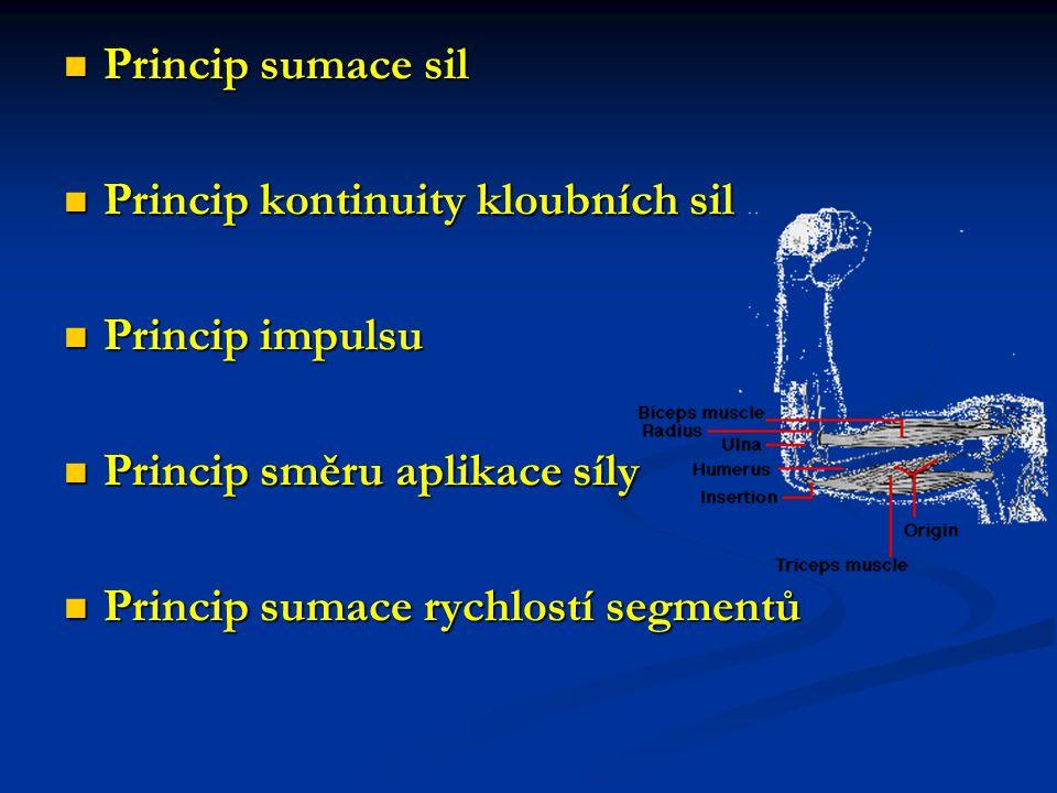 Princip sumace sil Princip sumace sil Princip kontinuity kloubních sil Princip kontinuity kloubních sil Princip impulsu Princip impulsu Princip směru aplikace síly Princip směru aplikace síly Princip sumace rychlostí segmentů Princip sumace rychlostí segmentů