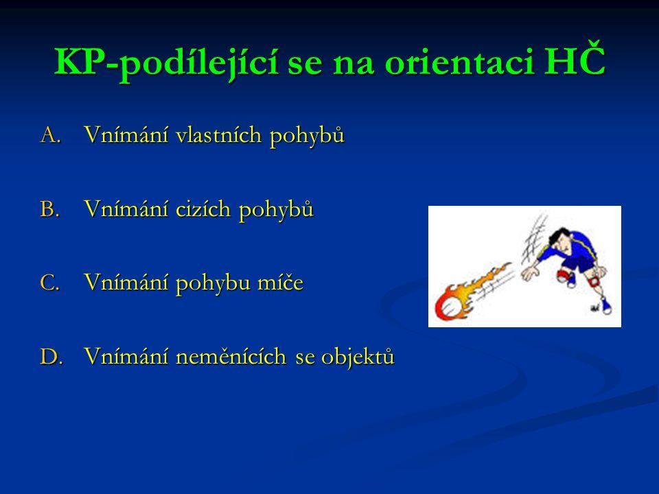 KP-podílející se na orientaci HČ A.Vnímání vlastních pohybů B.