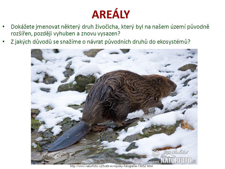 AREÁLY Dokážete jmenovat některý druh živočicha, který byl na našem území původně rozšířen, později vyhuben a znovu vysazen.
