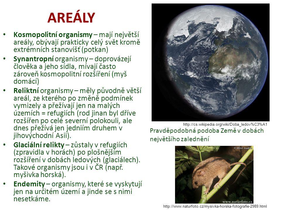 AREÁLY Kosmopolitní organismy – mají největší areály, obývají prakticky celý svět kromě extrémních stanovišť (potkan) Synantropní organismy – doprovázejí člověka a jeho sídla, mívají často zároveň kosmopolitní rozšíření (myš domácí) Reliktní organismy – měly původně větší areál, ze kterého po změně podmínek vymizely a přežívají jen na malých územích = refugiích (rod jinan byl dříve rozšířen po celé severní polokouli, ale dnes přežívá jen jedniím druhem v jihovýchodní Asii).