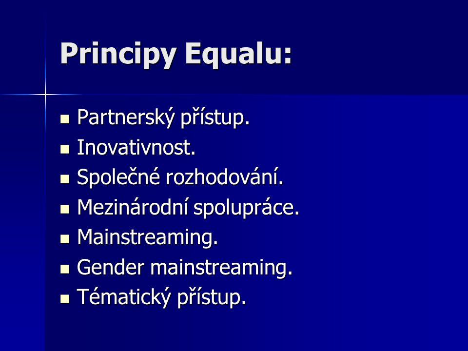 Principy Equalu: Partnerský přístup. Partnerský přístup.