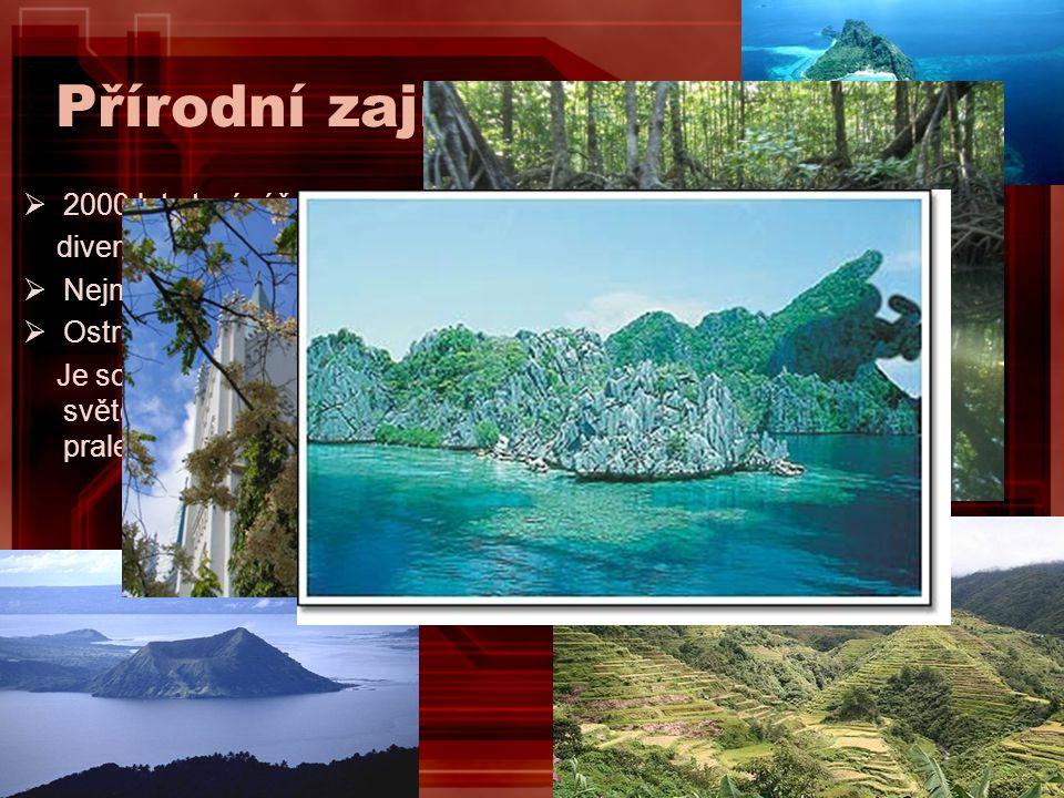 Přírodní zajímavosti  2000 let staré rýžové terasy Banaue Rice Terraces nazývané osmým divem světa.  Nejmenší sopka na světě Taal Volcano na ostrově