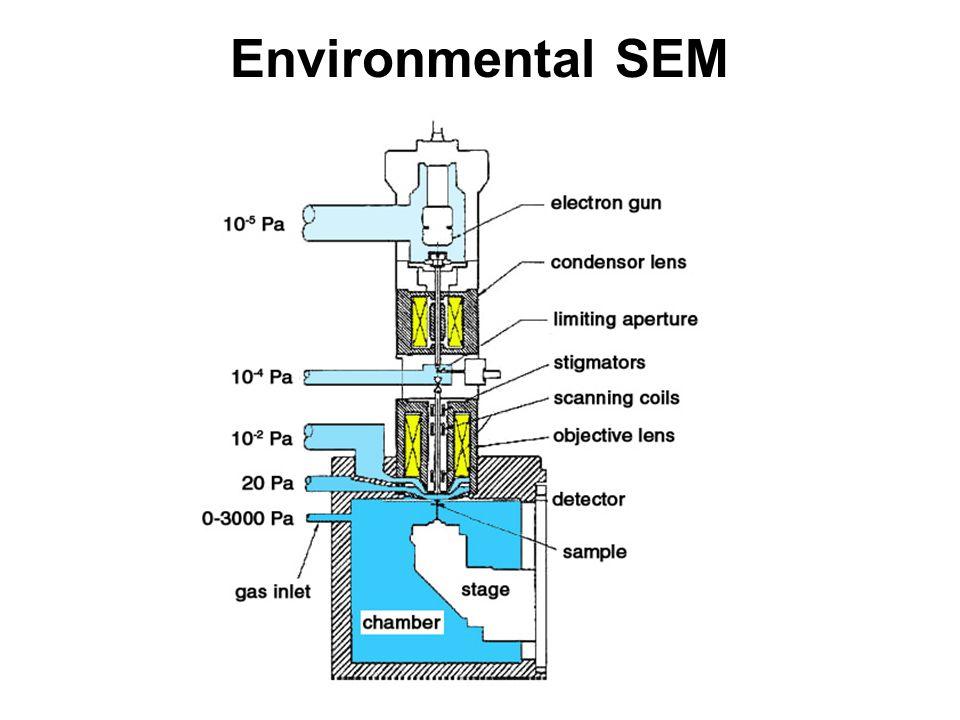 bodová WDS analýza analýza daného místa (min 5x5 μm) měří se 5 prvků současně (5 WDS spektrometrů) doba analýzy závisí na počtu analyzovaných prvků a požadované mezi detekce –10-40 s na píku, a 2 x ½ času na pozadí –přesnou analýzu daného místa, až do hodnot kolem X00 ppm silikáty 4-5 minut, monazit - 18 minut profil z bodových analýz –změna chemismu v daném profilu