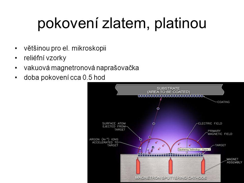 pokovení zlatem, platinou většinou pro el. mikroskopii reliéfní vzorky vakuová magnetronová naprašovačka doba pokovení cca 0.5 hod