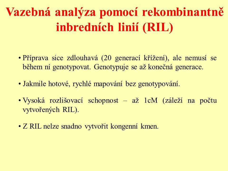 Vazebná analýza pomocí rekombinantně inbredních linií (RIL) Příprava sice zdlouhavá (20 generací křížení), ale nemusí se během ní genotypovat. Genotyp